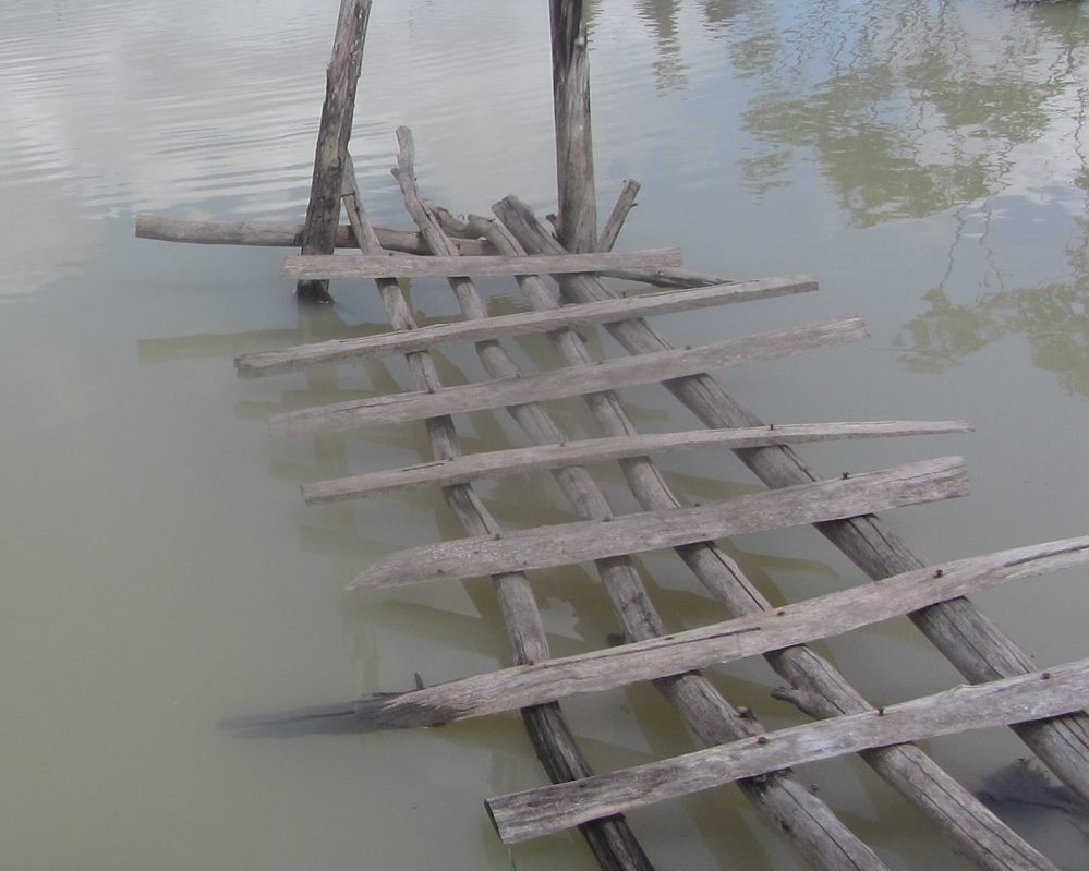 CFAP CAMBODIA